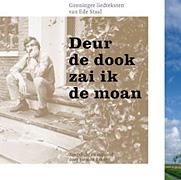 Siemon Reker - Deur de dook zai ik de moan (2004)