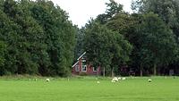 De woning in Westerlee. Foto: © Ina Boer