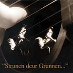 Diverse artiesten - Strunen deur Grunnen...